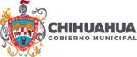 chihuahua_m